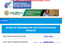 AP Inter Vocational Results 2018