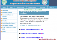 TS Inter 1st Year Results 2019